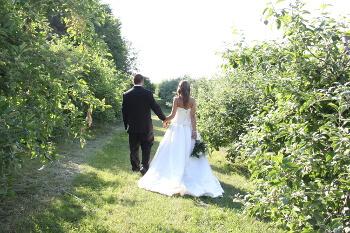 Mariés marchent dans les vergers